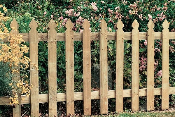 The Elite Palisade Fence